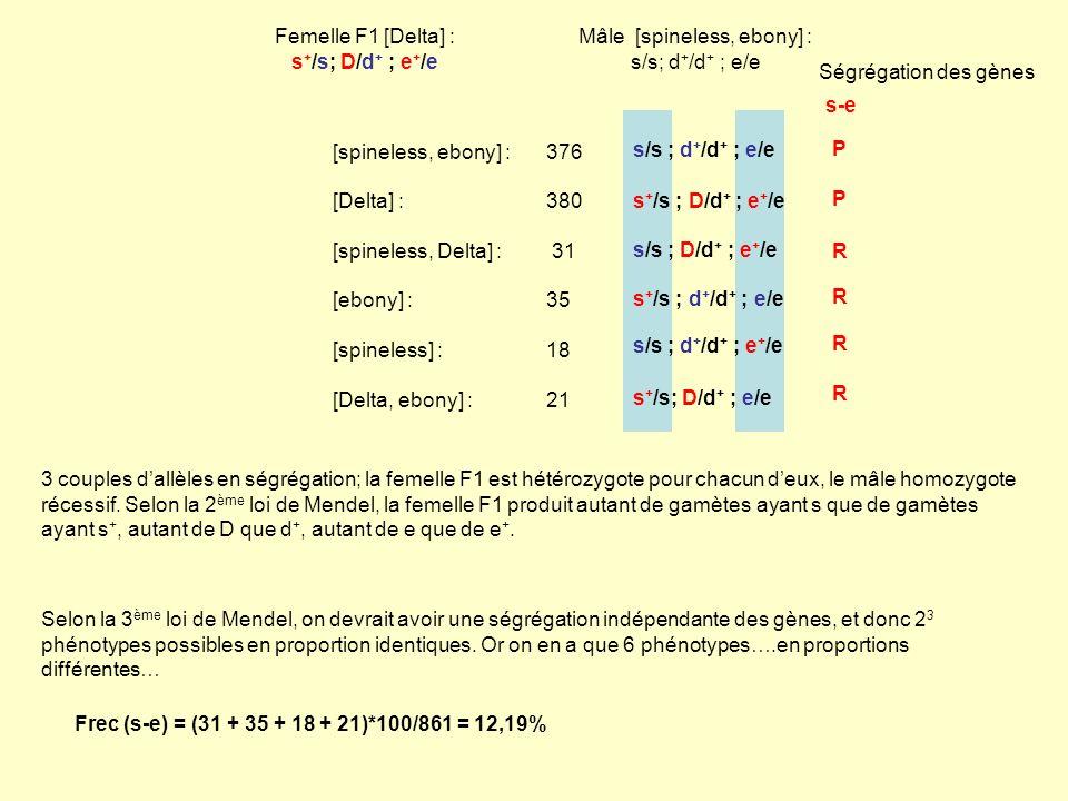 Femelle F1 [Delta] : s+/s; D/d+ ; e+/e